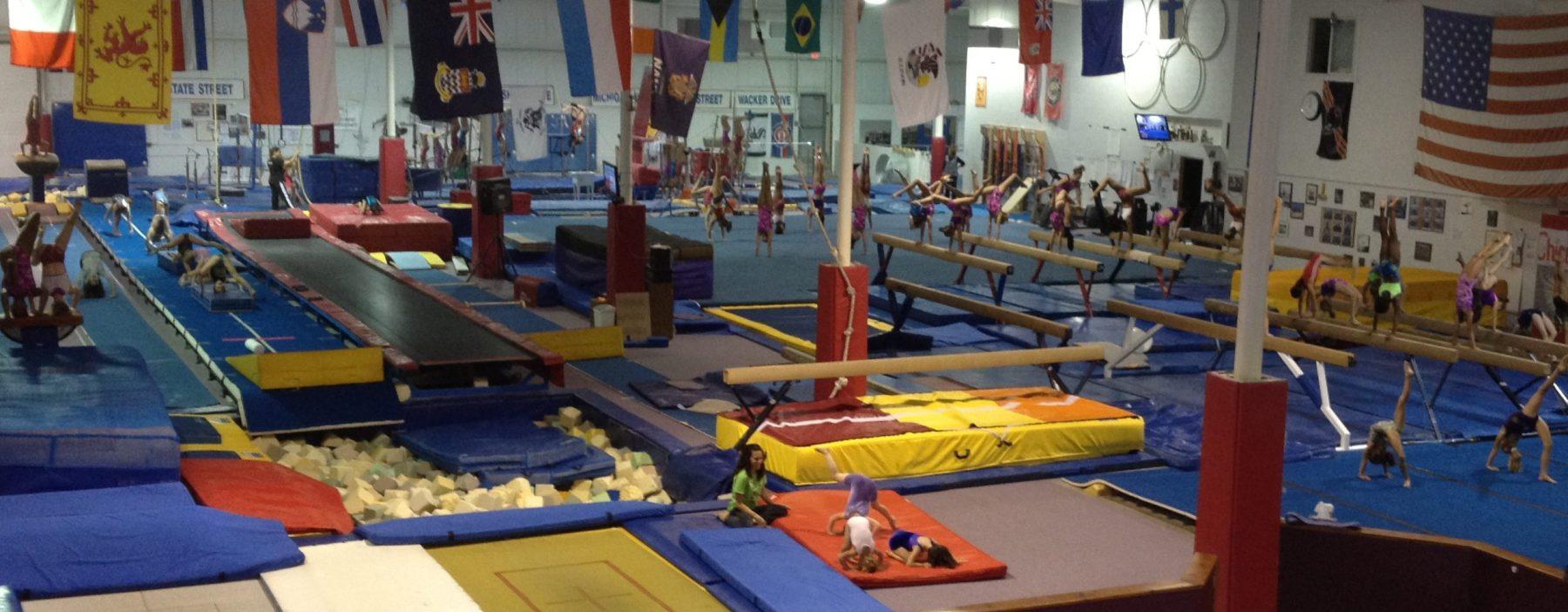 National Gymnastics Day 2012